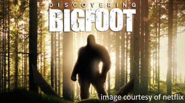 bigNETFLIXfoot
