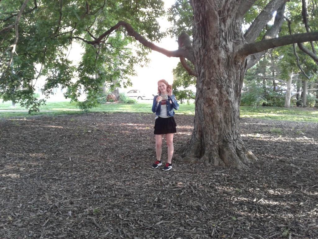 03 canopy tree